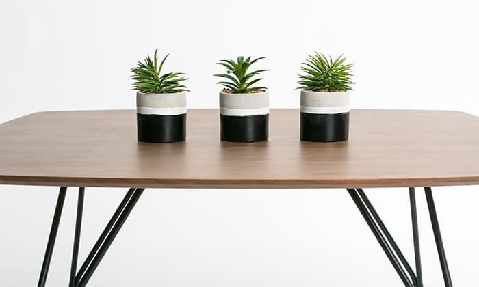 3 שולחן סלון