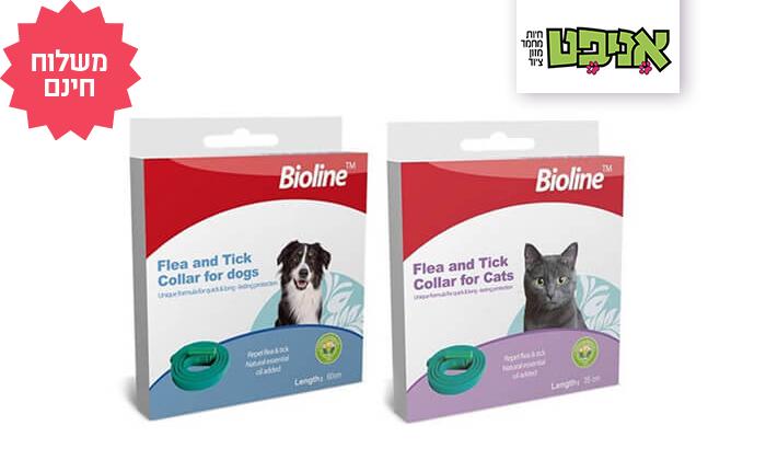 2 קולר נגד פרעושים וקרציות Bioline - משלוח חינם!