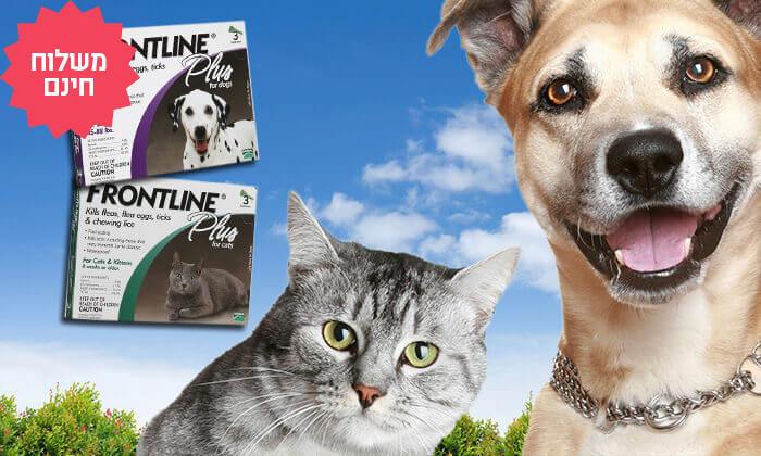 4 מארז 3 אמפולות Frontline Plus לחתולים או לכלבים | משלוח חינם