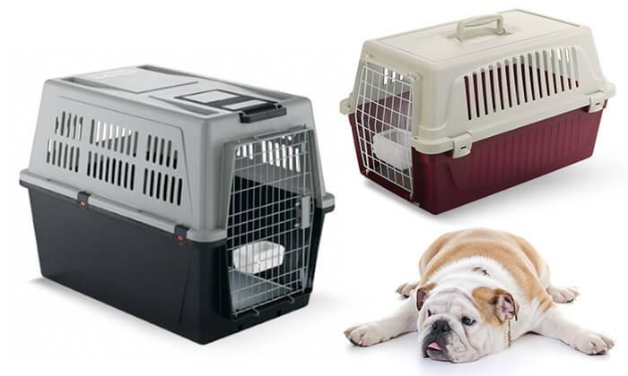 9 כלוב נשיאה-הטסה לחתולים וכלבים