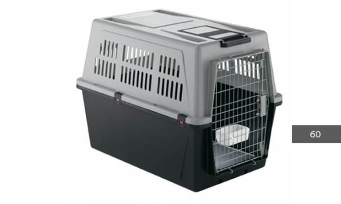 8 כלוב נשיאה-הטסה לחתולים וכלבים