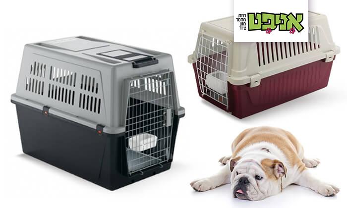 2 כלוב נשיאה-הטסה לחתולים וכלבים