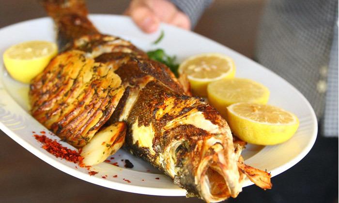 11 ארוחה זוגית בדרבי בר דגים, מרינה הרצליה