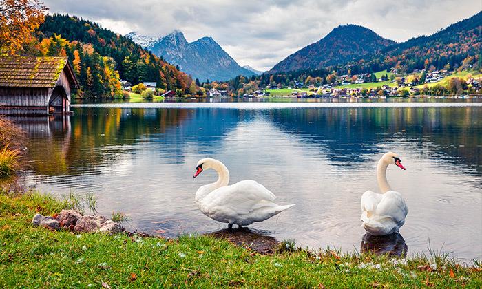 2 טיול מאורגן באוסטריה - כולל אגם כימזה, שייט וארמון לודוויג השני