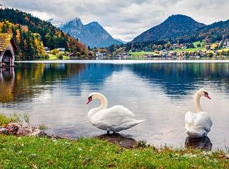 טיול מאורגן 8 ימים באוסטריה
