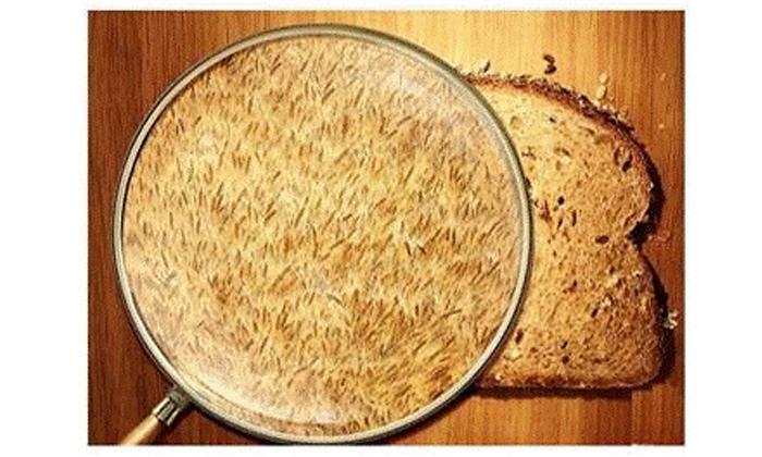 3 בדיקת אי סבילות למזון במעבדות WLAB