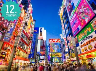 טיול 11 ימים ביפן, כולל פסח