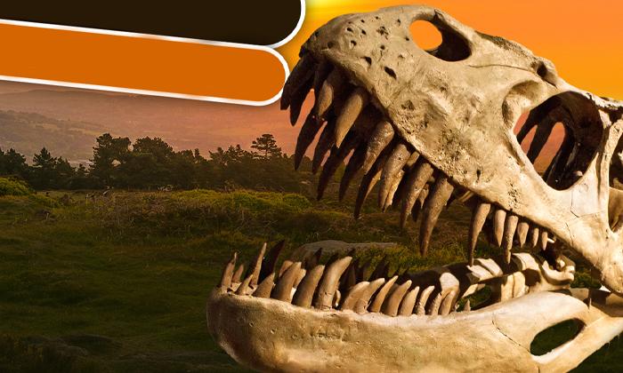 3 תערוכתדינוזאורים - ענקי הפטגוניה, פארק קרסו למדע באר שבע