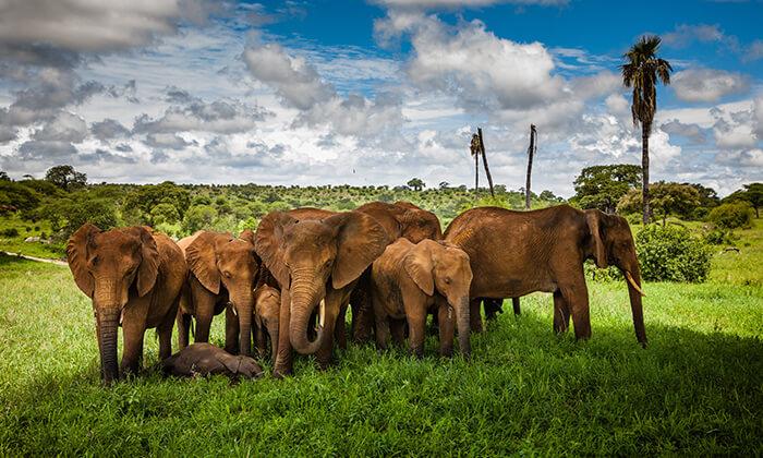 3 טיול מאורגן 10 ימים בדרום אפריקה