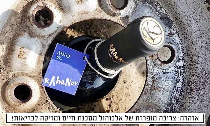 2 מארז יינות מיקב כהנוב באיסוף עצמי או במשלוח