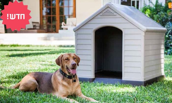 2 כתר: מלונה לכלב