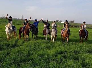 טיול רכיבה על סוסים בשרון