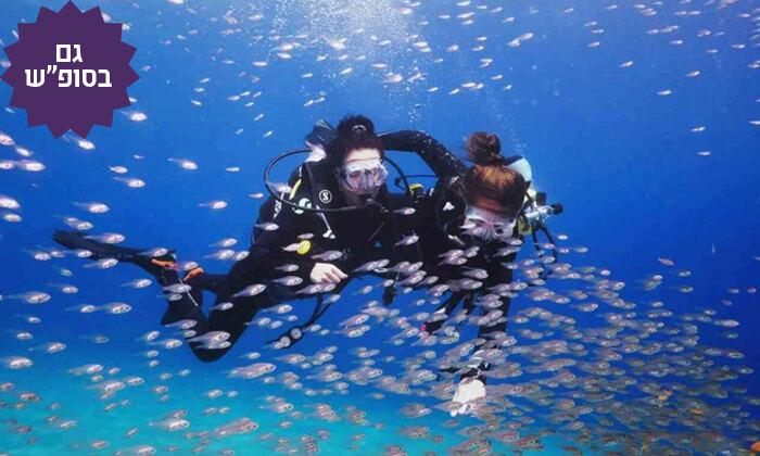 3 צלילת היכרות במועדון Ahla Diving,אילת