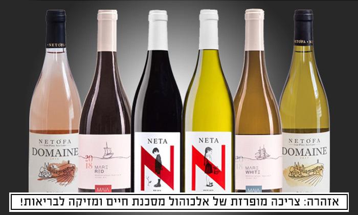 2 מבחר מארזי יינות מ-House of Wine במשלוח חינם לכל רחבי הארץ
