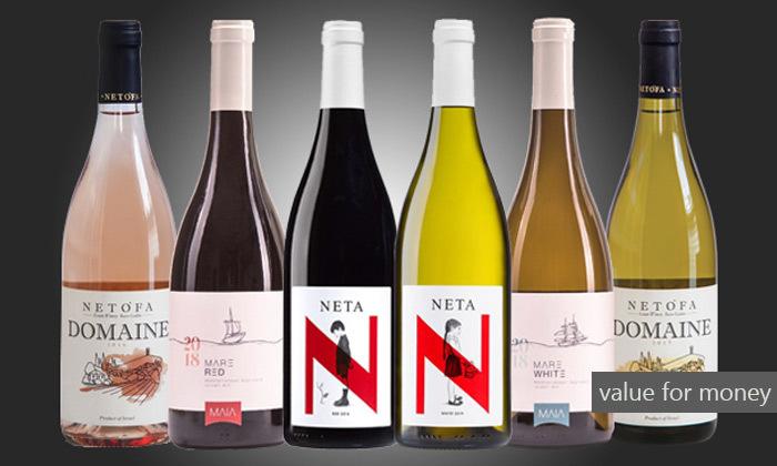 6 מבחר מארזי יינות מ-House of Wine במשלוח חינם לכל רחבי הארץ