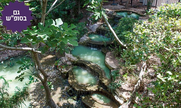 5 חבילת ספא וארוחת בוקר במלון אחוזת אסיינדה ביער, מעלות